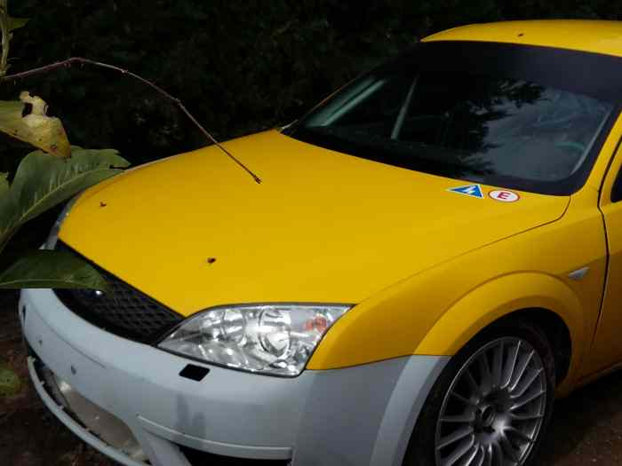 Ford Mondeo ST220 Ford MOTORSPORT ALLE...